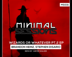 MS031: Brandon Heinz, Stephen Disario – Wizards or Whatever Pt 2 EP w/ remix by Carter Walker [Out Now!]